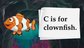 Letter C is for clownfish Royalty Free Stock Images