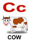 Letter  C cow Stock Photos