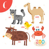 Letter C. Cute animals. Funny cartoon animals in vector.  Royalty Free Stock Images