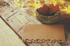 letter and couple of hearts in the bird nest Royalty Free Stock Images