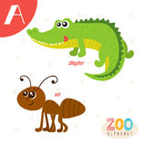 Letter A. Cute animals. Funny cartoon animals in vector. ABC boo. K. Vector illustration Stock Photos