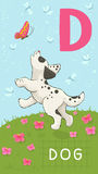 Letter D, animal ABC Stock Images