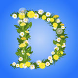 Letter D - dandelion and daisy Royalty Free Stock Photos