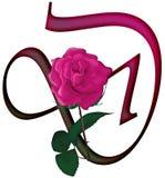 Letter D Floral FONT Stock Image