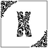The letter X. Decorative Font with swirls and floral elements. Vintage style.  Stock Images