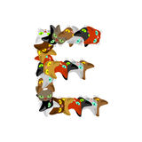 Letter E Cat font. Pet alphabet symbol. home animal ABC sign Stock Photo