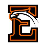 Letter E with eagle head. Great for sports logotypes and team mascots royalty free illustration
