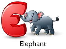 Letter E is for Elephant cartoon alphabet. Illustration of Letter E is for Elephant cartoon alphabet Royalty Free Stock Photos