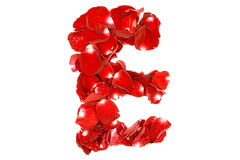 Letter E made from red roses petals. Isolated on white background Royalty Free Stock Images