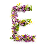 The letter «E» made of various natural small flowers. Royalty Free Stock Photo