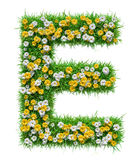Letter E Of Green Grass And Flowers Royalty Free Stock Photography