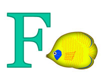Letter F Stock Photos