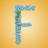 Letter F Royalty Free Stock Photo