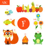 Letter F. Cartoon alphabet for children. Flower, fox, fire, frog. Letter F. Cartoon alphabet for children.  Vector illustration Royalty Free Stock Photography