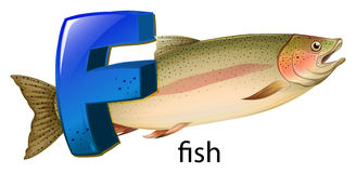 A letter F for fish Royalty Free Stock Photography