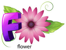 A letter F for flower Royalty Free Stock Images