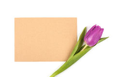 Letter with flower. Tulips with sheet of paper for romantic letter Royalty Free Stock Image
