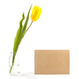 Letter with flower. Tulips with sheet of paper for romantic letter Royalty Free Stock Photography