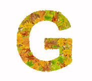 The letter G of alphabet made of autumn leaves Royalty Free Stock Photos