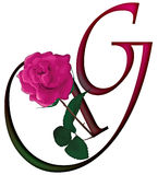 Letter G Floral FONT. LETTER G - Cute pink rose decorated colorful isolated font with additional PNG format with trandsparent background stock illustration