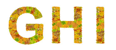 The letter G, H, and I of alphabet made of autumn leaves Royalty Free Stock Image
