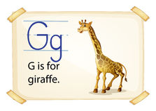 Letter G Royalty Free Stock Images