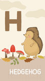 Letter H, animal ABC Stock Images