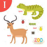 Letter I. Cute Animals. Funny Cartoon Animals In Vector. Royalty Free Stock Photo