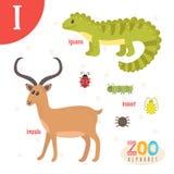 Letter I. Cute animals. Funny cartoon animals in vector. ABC book. Vector illustration royalty free illustration