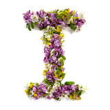 The letter «I» made of various natural small flowers. Royalty Free Stock Photos