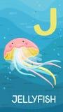 Letter J, animal ABC. Animals ABC, letter J. Jellyfish in alphabet card Royalty Free Illustration