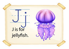 A letter J for jellyfish Royalty Free Stock Photography
