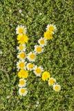 Letter K flower alphabet Royalty Free Stock Images