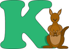 Letter K with a Kangaroo. The Letter K with a Kangaroo sitting beside it vector illustration