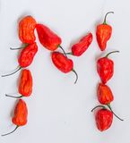 Letter M alphabet made with Ghost pepper Bhoot jolokia over white background.  Stock Images