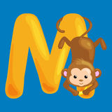 Letter M with animal monkey for kids abc education in preschool. Monkey animal and letter M for kids abc education in preschool.Cute animals letters english Royalty Free Illustration