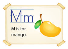 A letter M for mango. On a white background Stock Photos
