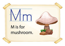 A letter M for mushroom Royalty Free Stock Photo