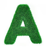 Letter made of grass Royalty Free Stock Image
