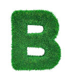 Letter made of grass Stock Photography