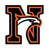 Letter N with eagle head. Great for sports logotypes and team mascots vector illustration