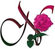 Letter N Floral FONT Stock Photo
