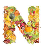 Letter N. Made of autumn colored leaves isolated on white background Royalty Free Stock Photos