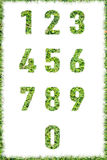 Letter numbers made set green grass isolated Stock Photos