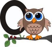 Letter O as Owl Stock Photos
