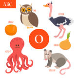 Letter O. Cartoon alphabet for children. Owl, opossum, ostrich, Stock Image