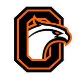 Letter O with eagle head. Great for sports logotypes and team mascots royalty free illustration