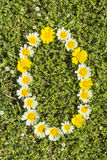 Letter O flower alphabet Royalty Free Stock Photos