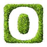 Letter O made of green leaves Stock Photo