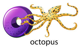 A letter O for octopus Stock Photography